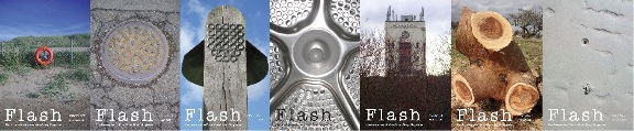 A montage picture of a selection of Flash magazine covers