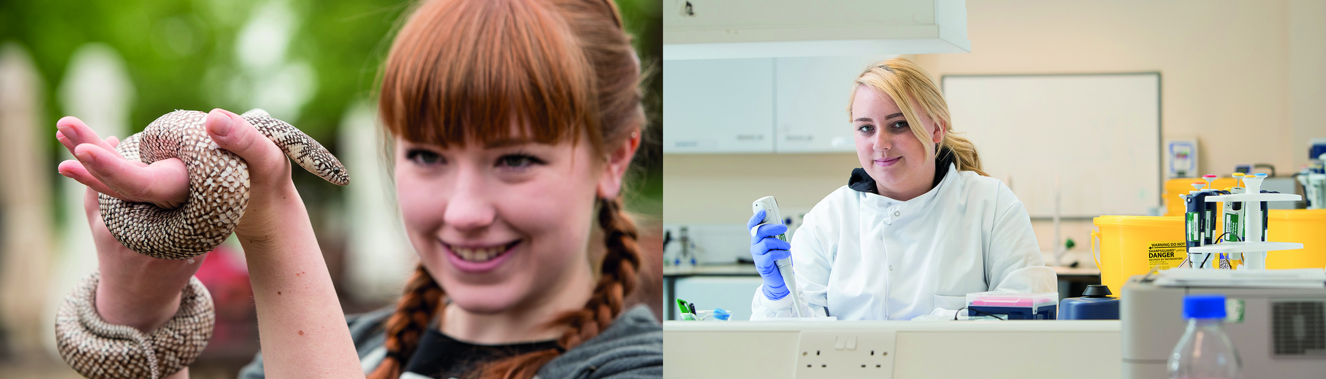 Images of students on work based learning - one of a student holding a snake, the other of a student in a lab